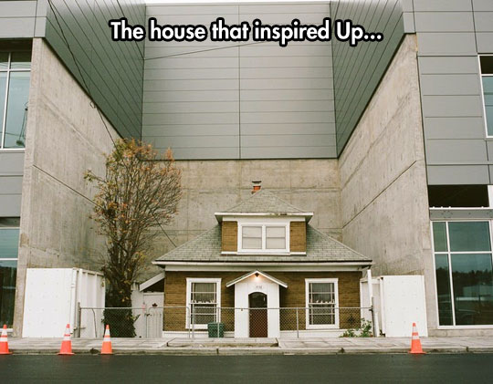 cool-Up-house-real-building-trapped
