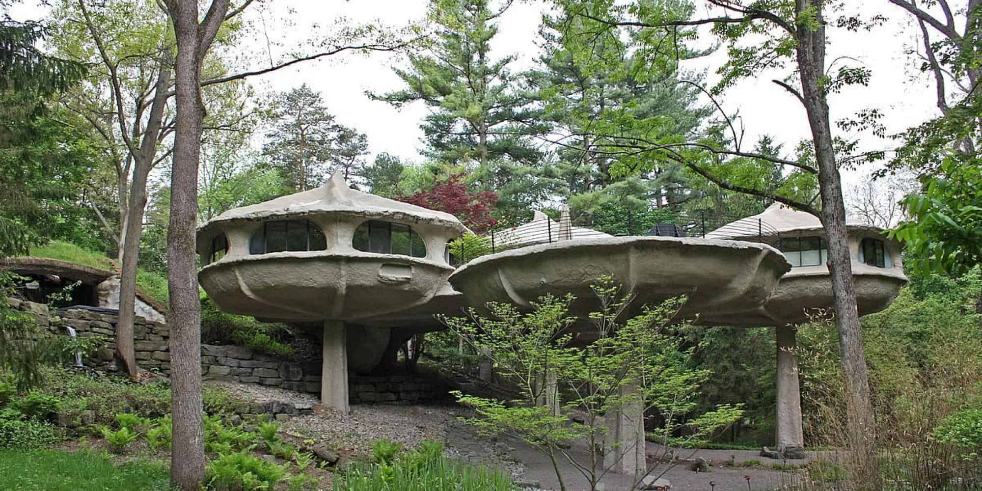 A complete tour of the mushroom house mushroomhouse publicscrutiny Gallery