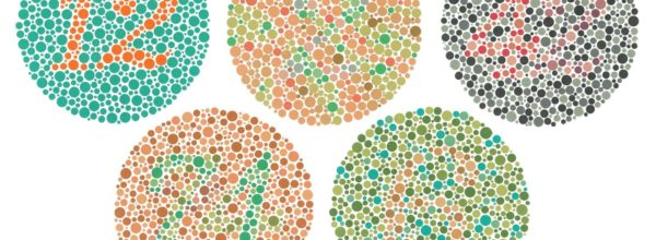 One in Twelve Men Are Color Blind: Take the Test