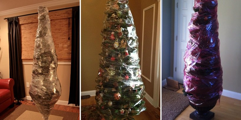After christmas wrap your entire tree with saran for