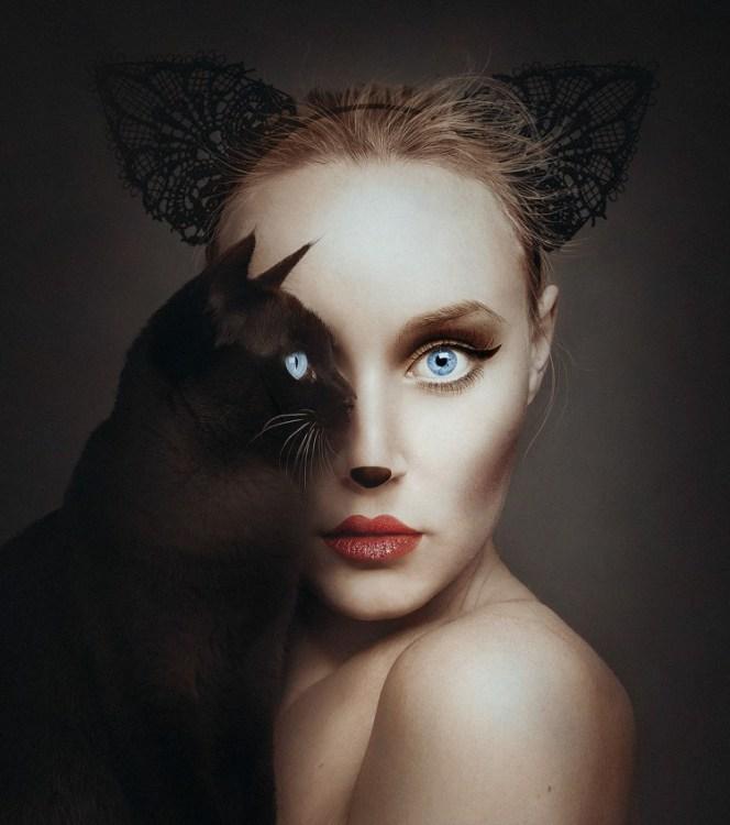 Cat-e1453145536646