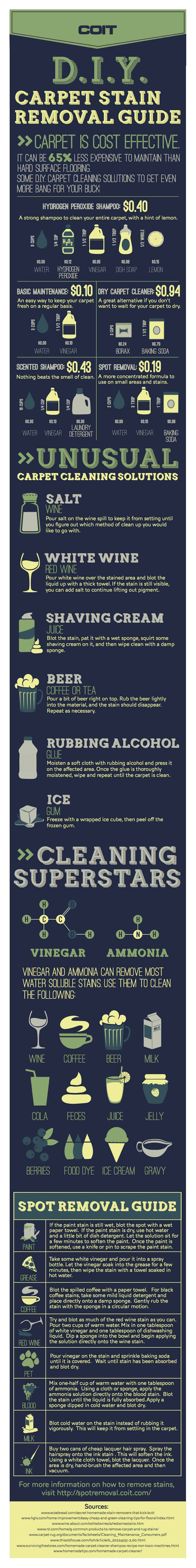 DIY_carpet_stain_removal_guide_Infographic.large