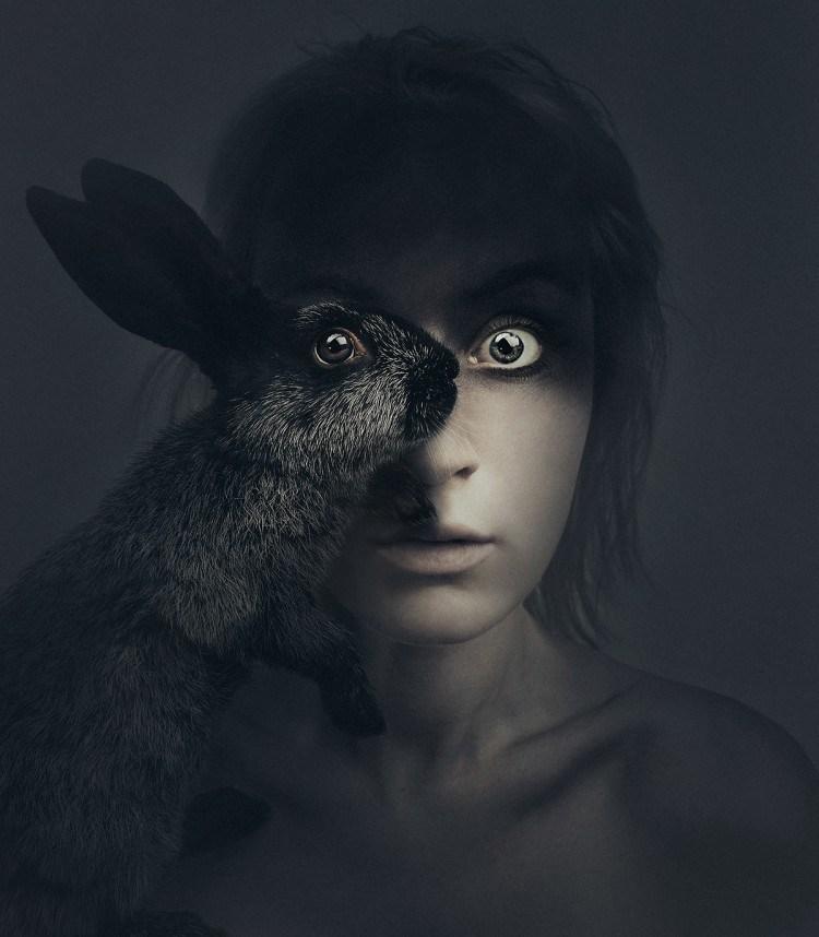 Rabbit-e1453145579427