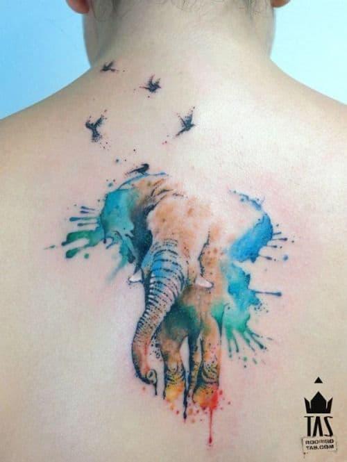 elephant15