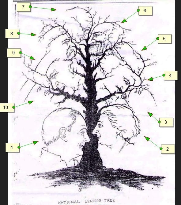 faces in tree answer