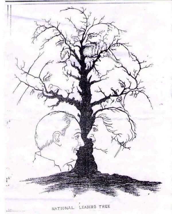 faces in tree