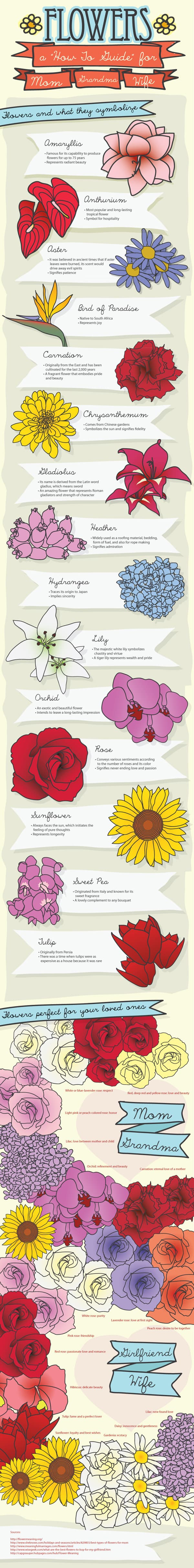 The Flower Color & Meaning Charts Every Man Must See ...