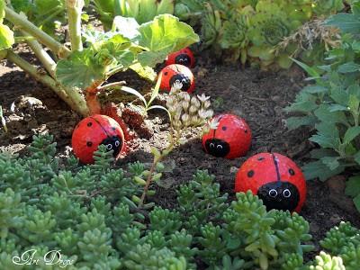 ladybug10