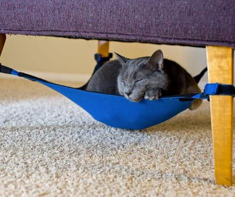 cat crib3