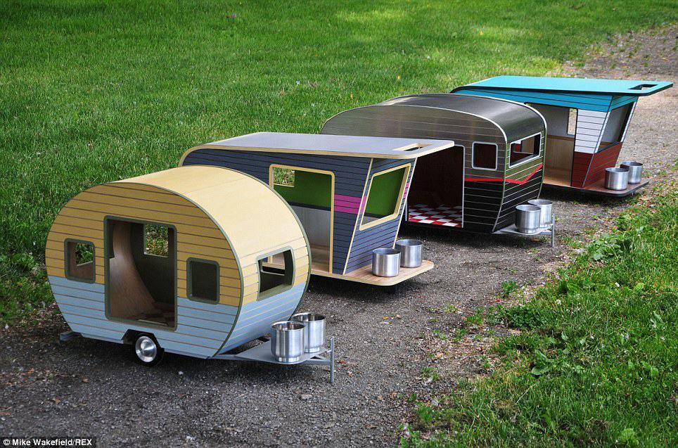 dog camper7