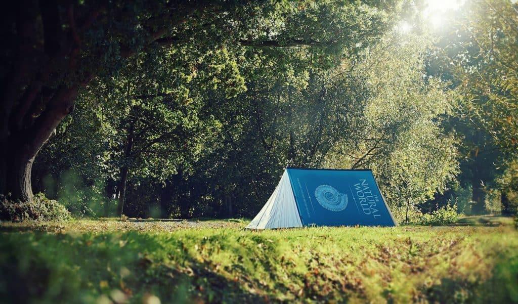 tent33