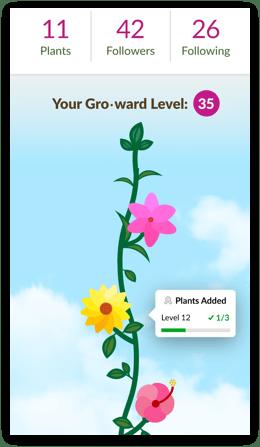 grow it7