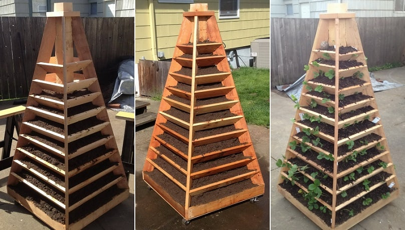 How to build an awesome vertical garden pyramid tower for for Vertical garden planters diy