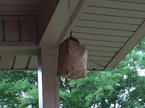 brown bag1