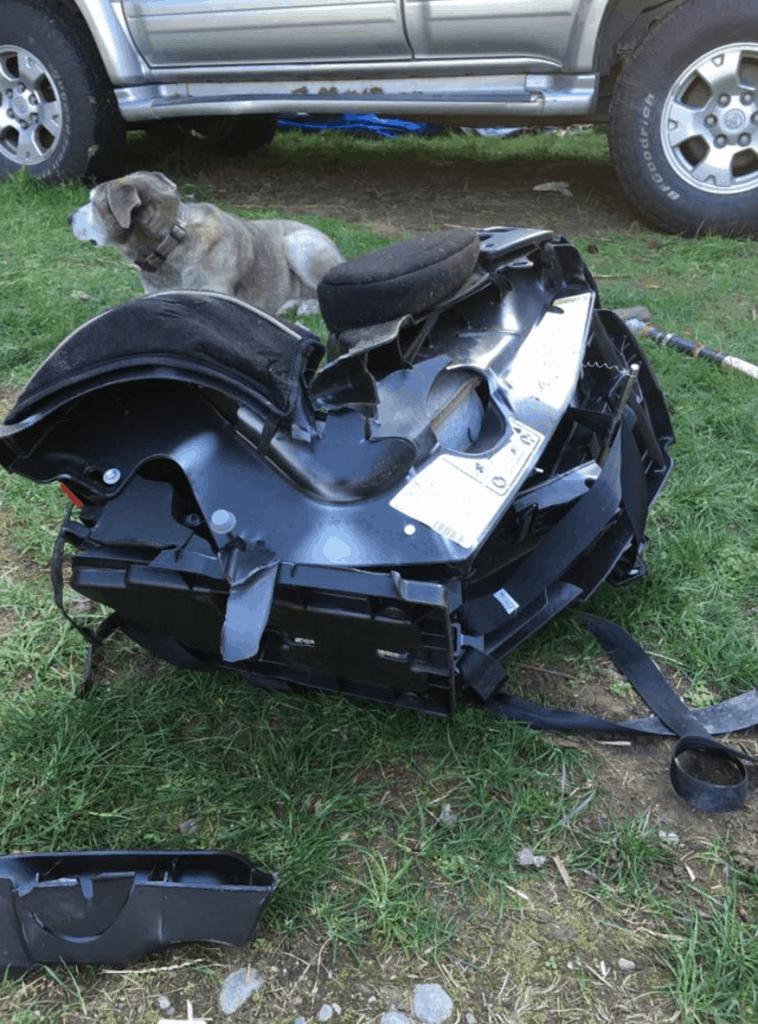 car seat6