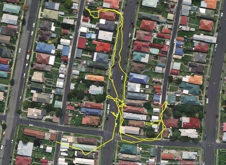 cat track2