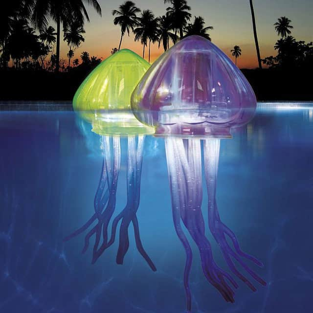jellyfish pool1