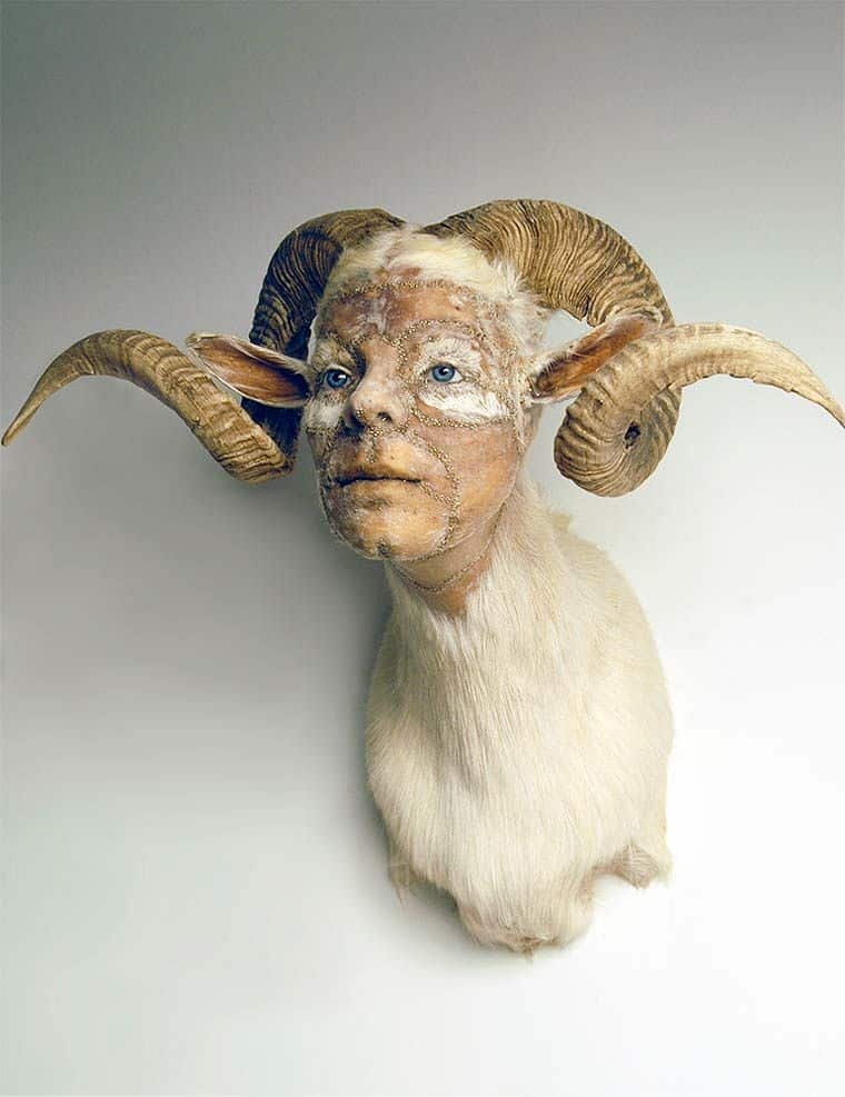this-artist-merges-humans-with-animals-in-surreal-taxidermy-that-s-terrifying-af-753857