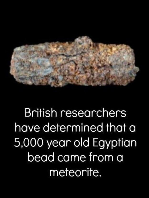 scientific-facts-07