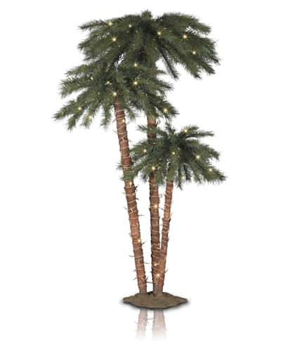 catalina-breeze-tree-2t