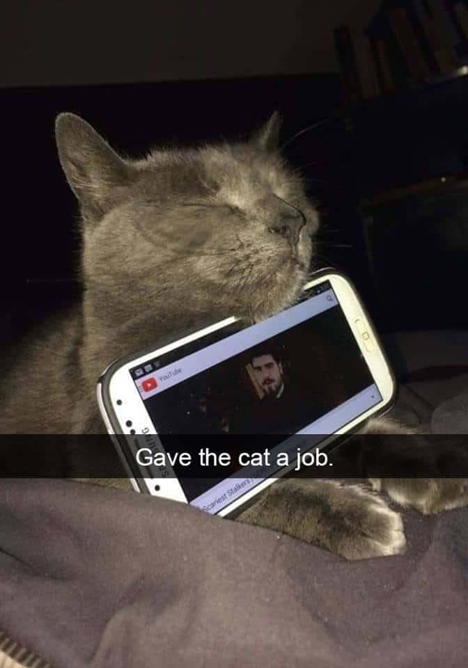 catsnap7