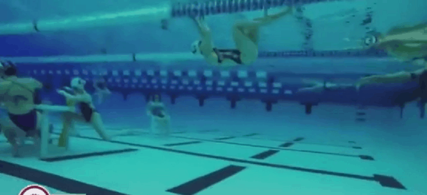 this swim team nailed the mannequin challenge in a big way awesomejellycom - Olympic Swimming Pool Underwater