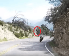 motorcycle crash cliff