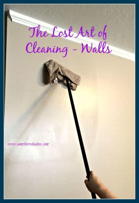 Dust House Cleaning Hacks