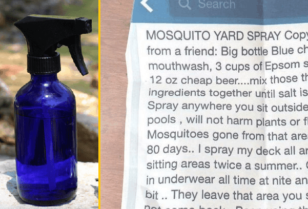How To Make Your Own 3-Ingredient Mosquito Yard Spray That ...