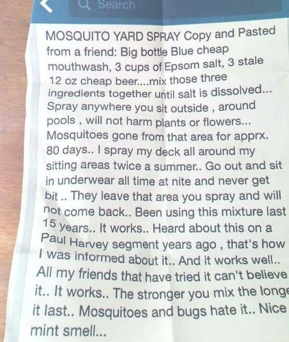 mosquito yard spray