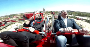 roller coaster bird face