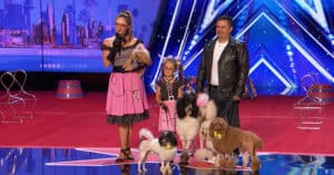 america's got talent dog talent