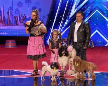 america's got talent dog talent
