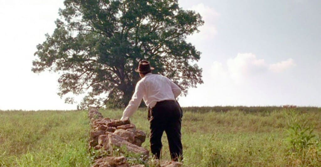 The Famous Shawshank Oak Tree Is Gone But For A Price