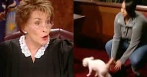 Judge Judy lost dog