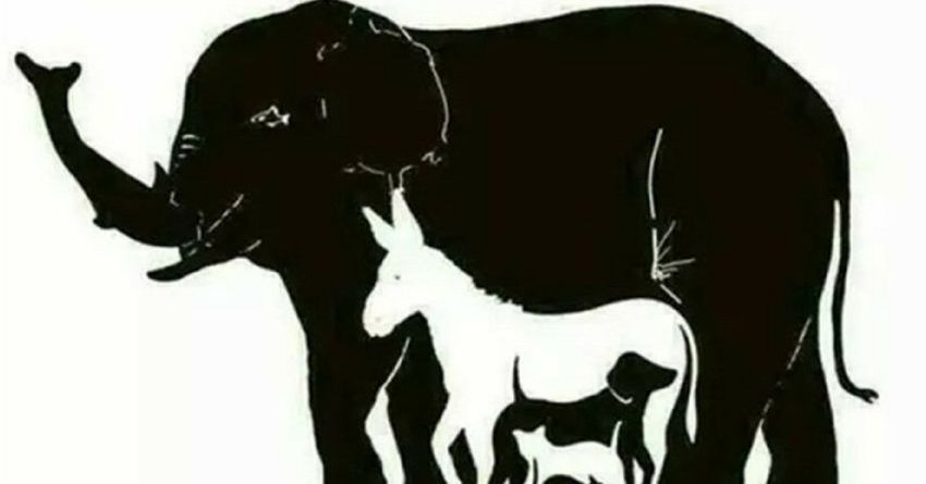 How Many Animals Are Hidden In This Picture