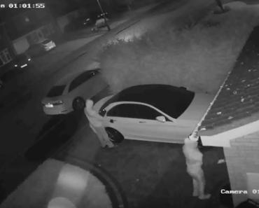relay box car thief