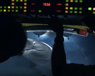 sharks attack submarine