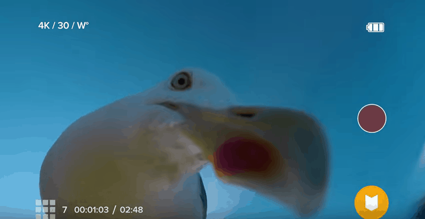 GoPro Seagull Drone