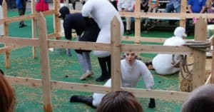Corpus Dance Project Human Sheep