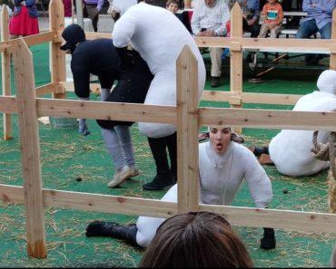 Corpus Dance Project Human Sheep