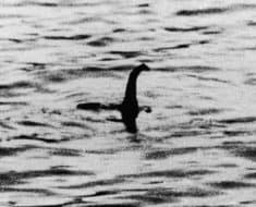 Loch Ness Monster Video Picture